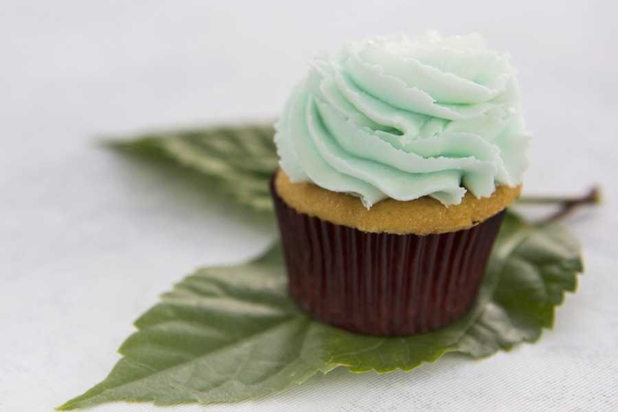 FREE cupcake with the purchase of an adult aentree at Typhoon Tilly's  or Leaning Palms