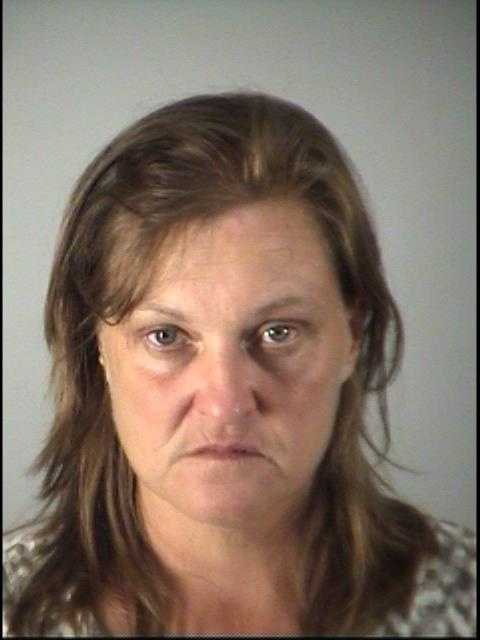 DONNA EVAN LEWIS- COCAINE-POSSESS POSSESS COCAINE