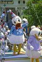 Back in 1984, Walt Disney World Resort celebrated his birthday with Donald's 50th Birthday parade.