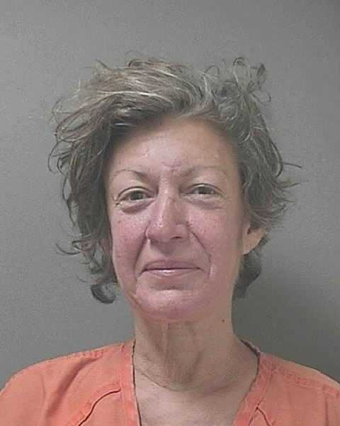 ANDRINOPOULOS, VICKI- PANHANDLINGSee the latest mug shots on Facebook.