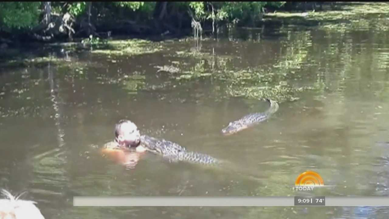 Swamp tour guide feeds alligator with mouth