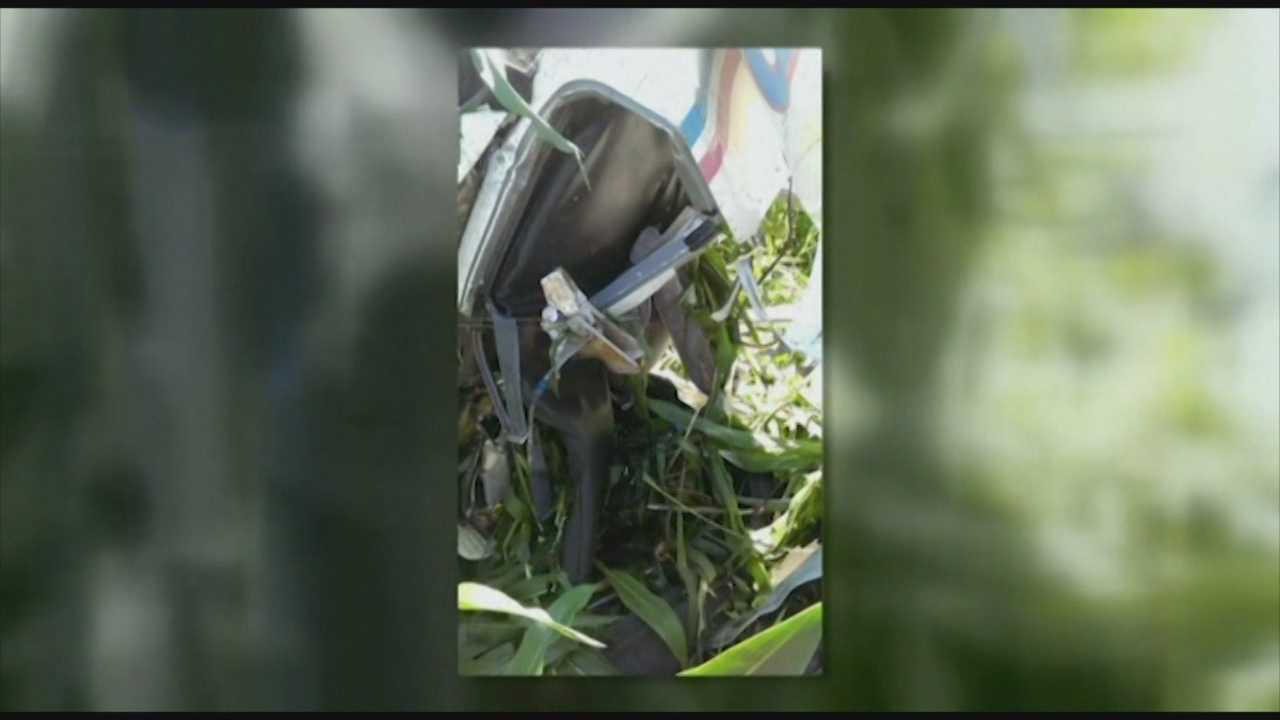 Pilot claims skydiver broke plane, forced him to jump before crash