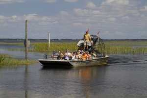 35. Fly through the wetlands on an air-boat rideTIP: Boggy Creek Airboat Rides offers a swamp excursion 365 days a year.
