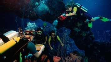 44. Scuba Dive at Epcot's DiveQuest.TIP: Guests who are not SCUBA-certified (or under 10 years old) should look into Epcot's Dolphins in Depth experience or the Epcot Seas Aqua Tour.