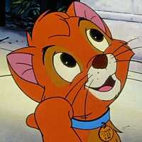 Oliver from the 1988 movie Oliver & Company.