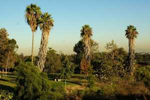 7. The grounds of the Hollywood Tower Hotel were inspired by the look of California's Griffith Park and Elysian Park.