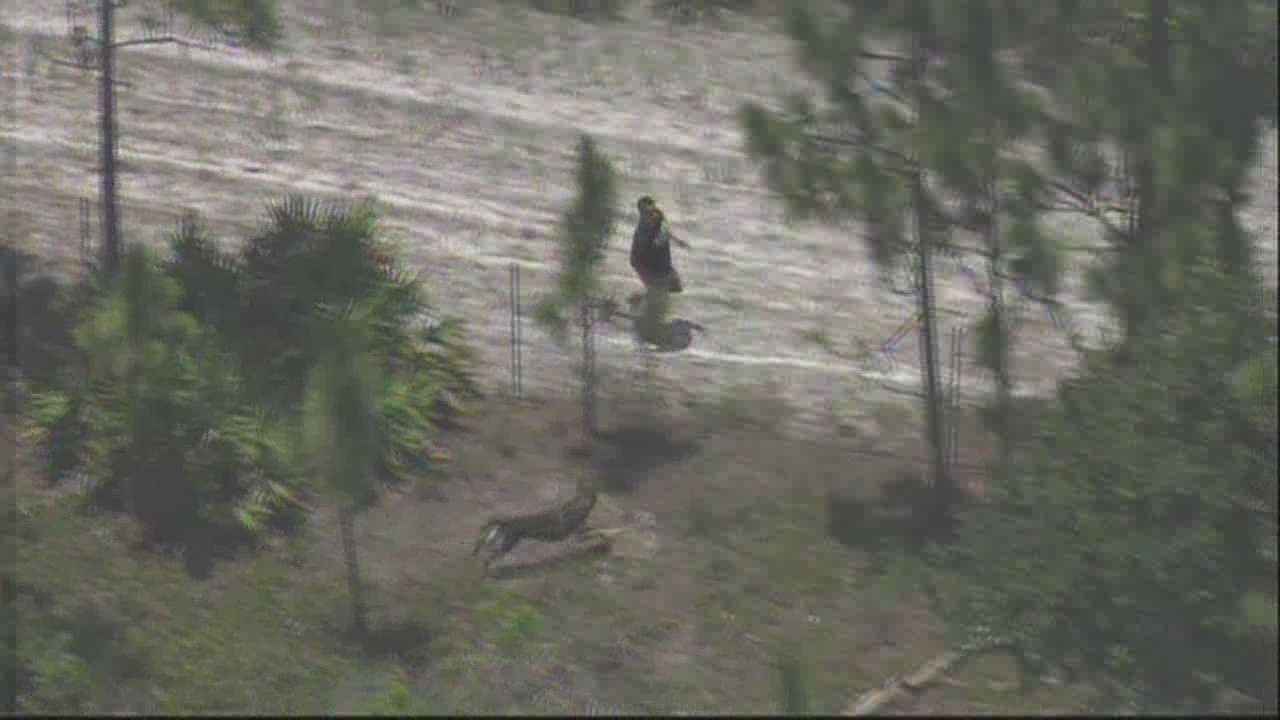 Chopper 2 was live over a police chase on the Turnpike on Thursday afternoon. Watch as a K-9 takes down the suspect.
