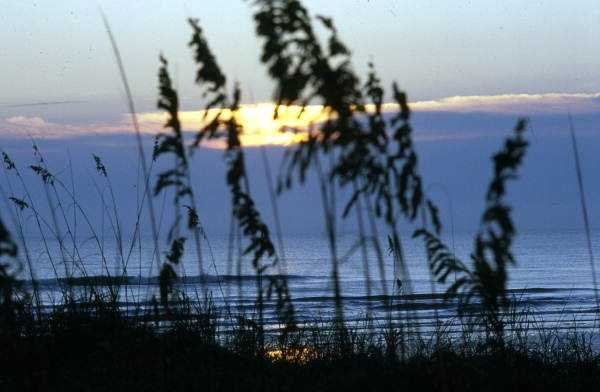 1985: A view of the sunrise in New Smyrna Beach