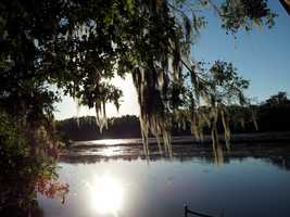 2013: The Wekiva River