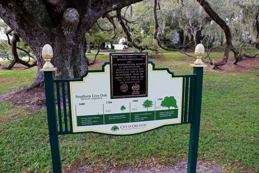 4. Urban Scavenger Quest in Orlando's Loch Haven ParkTry and solve mind-boggling puzzles while adventuring around Loch Haven Park. You can even treat yourself to a mystery restaurant. If you choose that option upon registration, you will get a secret password at the end of your Quest to figure out where you will be having lunch or dinner. The price of your Quest does not include the cost of the meal.Cost: $19.94-$24.94Buy tickets here.