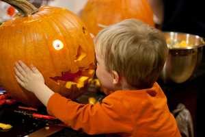 8. Club Lake Plantation Fall FestivalWhen: Oct. 1 through Oct. 31, 10 a.m to 6 p.m.Where:3403 Rock Springs Rd., Apopka, FL 32712Admission:On weekends,$15.95 for 13 and up, $12.95 for 12 and under/On weekdays, $10.95 for everyoneActivities:Pumpkin carving, country store, food, drinks, hayrides, duck racing games, horse swings, air cannon launcher, pumpkin chunking