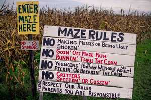 3. Long & Scott Farms/Zellwood Corn MazeWhen:Oct. 4 - Dec. 14Where:26216 County Rd. 448A, Mt. Dora, FL 32757Admission:$9 age 3-16, $11 adultsActivities:Pumpkin patch, corn maze, tractor-pulled hay rides, face painting, inflatables, jumping pillow, 60-ft slide, fishing, concessions