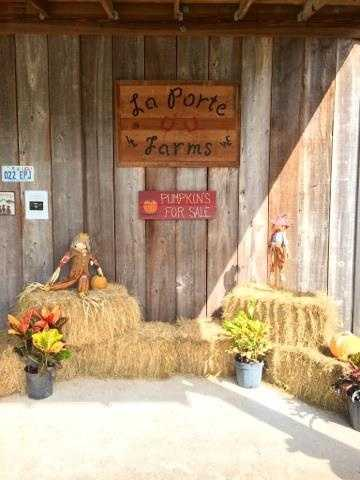 1. LaPorte Farms Family Fall FunWhen: Every Sun. in Oct. from 10 a.m. to 4 p.m.Where: 7700 129th St., Sebastian, FL 32958Admission: Donations, pony rides $5, unlimited bounce house and games $5Activities: Pumpkin patch, pony rides, hay rides, sunflower and corn field, bounce house, concessions