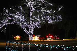 24. Light Up the Wild at Moss ParkWhen:Dec. 7, 6 p.m. to 9 p.m.Where:Moss Park, 12901 Moss Park Rd., Orlando, FL 32819Admission:$5 per vehicle (up to 8 passengers per vehicle), tickets available at Moss Park entryActivities:Drive-through light fest, gingerbread house, family photo opps with Santa