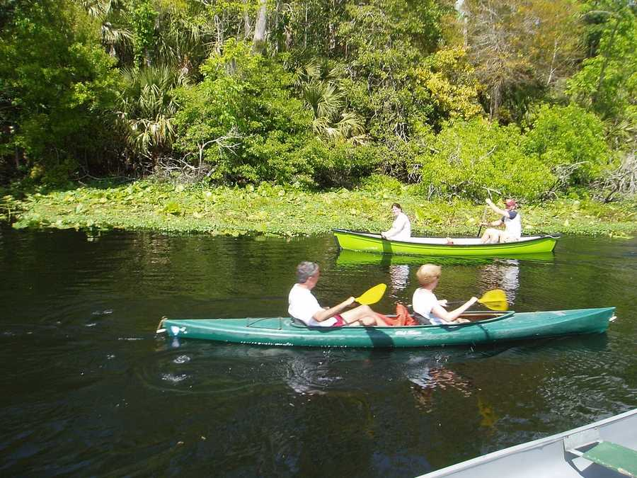 32. Wekiwa Springs State ParkEnjoy hiking, nature trails, fishing, swimming, campfires, and a nature museum and interpretive exhibit in the park's Nature Center. (Regular admission to the park is $6 per vehicle.Address: 1800 Wekiwa Cir., Apopka, FL 32712