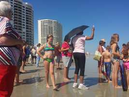 An effort is underway to rescue a beached whale at Daytona Beach Shores.