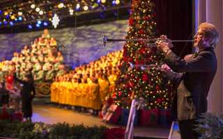 Presented in the America Gardens Theatre at Epcot, Candlelight Processional a Disney tradition that features the joyous retelling of the Christmas story by a celebrity narrator, accompanied by a 50-piece orchestra and a glorious mass choir. Show times are at 5, 6:45 and 8:15 p.m.