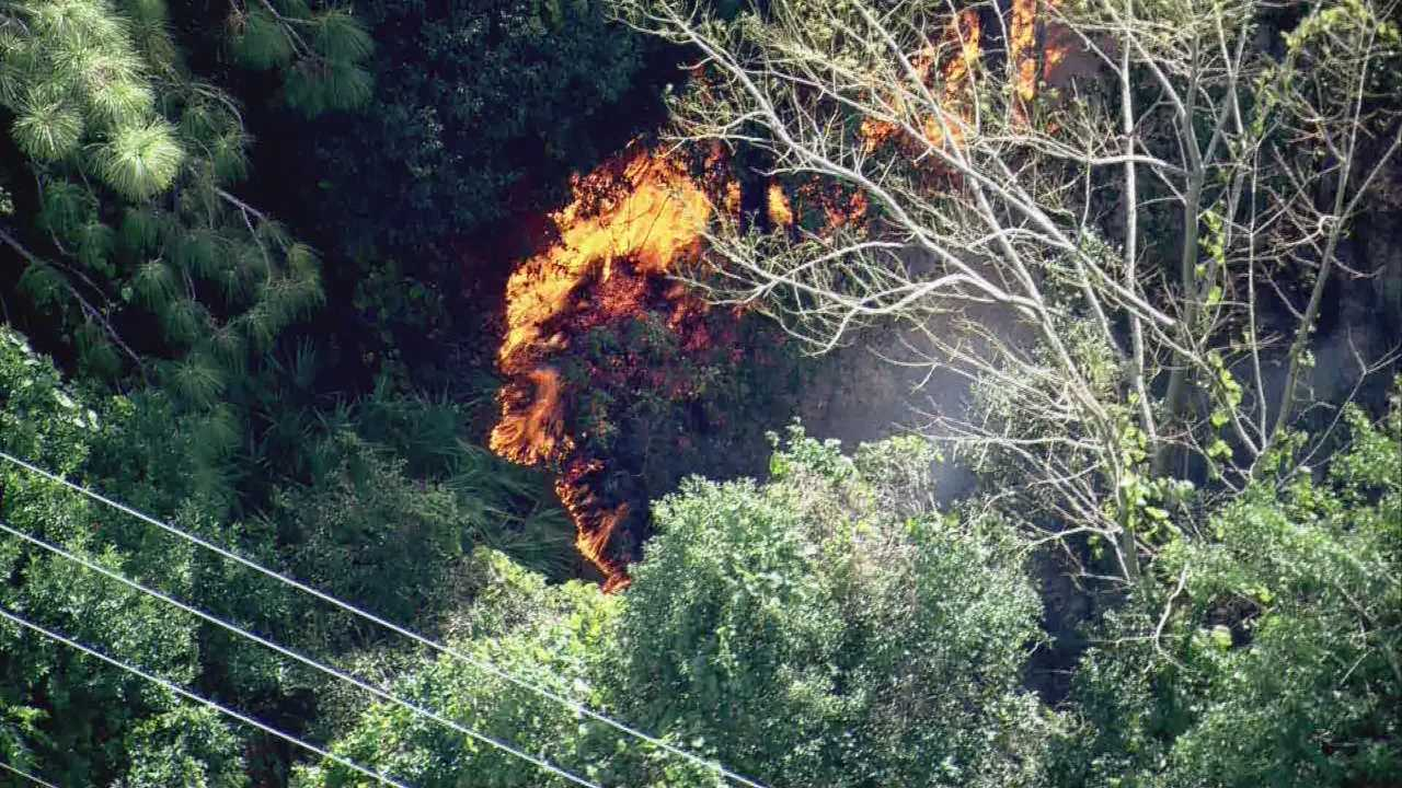 A fast-moving brush fire in Orange County is forcing the evacuation of nearby homes.