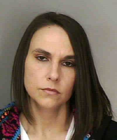 TENNEY, MISTY  MARIE - DOMESTIC VIOLENCE BATTERY TOUCH OR STRIKE