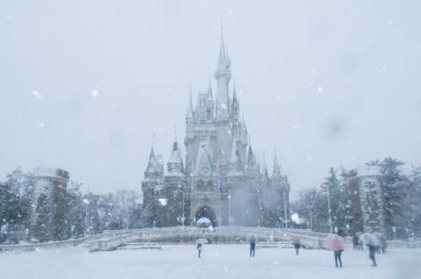 This is likely something you'll never see at Disney World in Florida. See pictures of past snowfall at Toyko Disneyland, posted on the Disney Parks Blog.