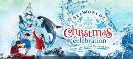 4. SeaWorld's Christmas CelebrationWhen: Sat., All day Where: SeaWorld Orlando, 7007 Sea World Dr., Orlando, FL 32821Cost: Get tickets here.Listen to Christmas carols, admire tress of lights, watch skaters dance on ice and attend light shows.