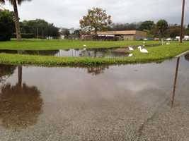 Flooding in Seminole County