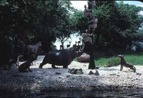 Scene from the Jungle Cruise amusement ride in 1979