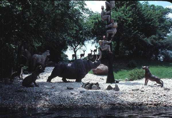 Scene from the Jungle Cruise amusement ride in 1979
