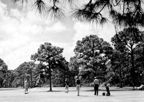 1961 - View of the golf course and golfers in Rockledge