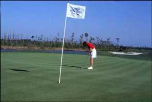 1990s - Woman golfer putting on the course at the LPGA International golf club in Daytona Beach