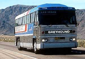 7. In grad school, I was the graduate assistant for the women's soccer team. As part of my duties, I drove a grey hound bus which means I have a commercial driver's license.