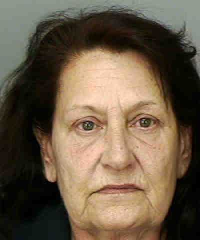SARNO, DEBORAH  ELLYN - THEFT/RETAIL