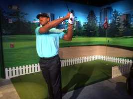 41. Tiger Woods -Professional golfer