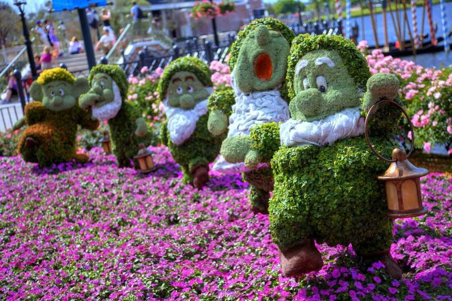 4. Epcot Flower and Garden Festival When: March 4 - May 17. Where: Epcot, 200 Epcot Center Dr, Lake Buena Vista, FL, 32821Cost: Park admission. Get tickets here. Starting this week guests of Epcot can enjoy the annual Flower & Garden Festival. From gardens to Disney character topiaries to flavorful bites, the festival is fresh and is dressed to impress. Check out Orlando My Way's inside look here.