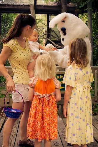 1. Hippity Hop Adventure presented by FAIRWINDS Credit UnionWhen:  Saturday and Sunday, 9 a.m.- 3 p.m.Where: Central Florida Zoo & Botanical Gardens: 3755 N U.S. Highway 17-92, Sanford, FL 32771Cost: $11.95-$16.50Central Florida Zoo & Botanical Gardens is hosting an adventure for kids, where they can find clues from the Easter bunny himself. Kids receive free bunny tails to wear and can enjoy crafts, a bounce house, musical entertainment, egg hunts, and even receive candy and prizes along the way.