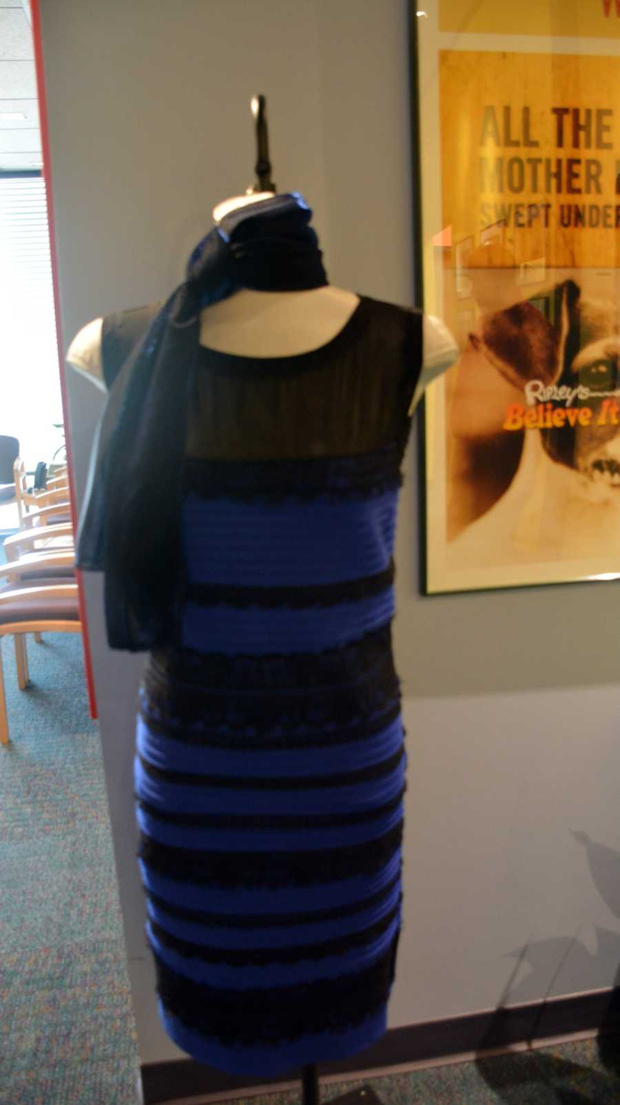 The OFFICIAL black and blue dress (sorry team white and gold)