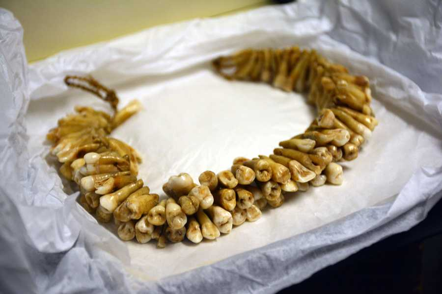 Necklace made from teeth of people eaten by cannibals