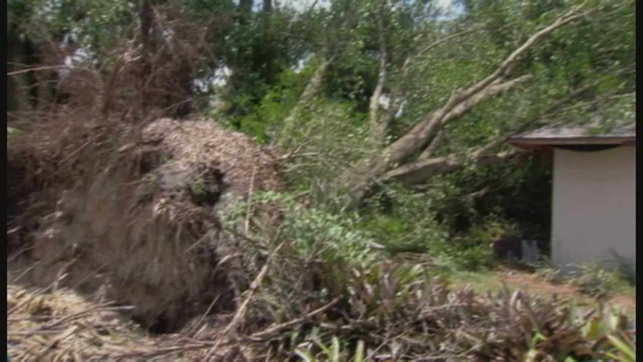 Casselberry neighborhood cleanup up after severe weather