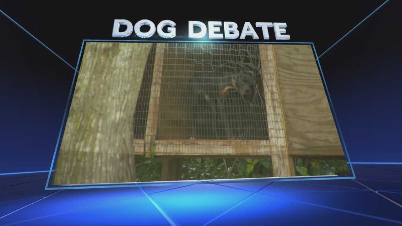Dozens are outraged after allegations of animal abuse and a possible dog fighting ring were reported in Orange County. Chris Hush (@ChrisHushWESH) has the story.