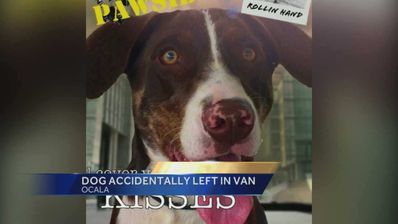 A 1-year-old dog was accidentally left in a transport van for two hours. Now, the Humane Society is establishing some rules in the wake of the dog's death. Gail Paschall-Brown (@gpbwesh) has the story.