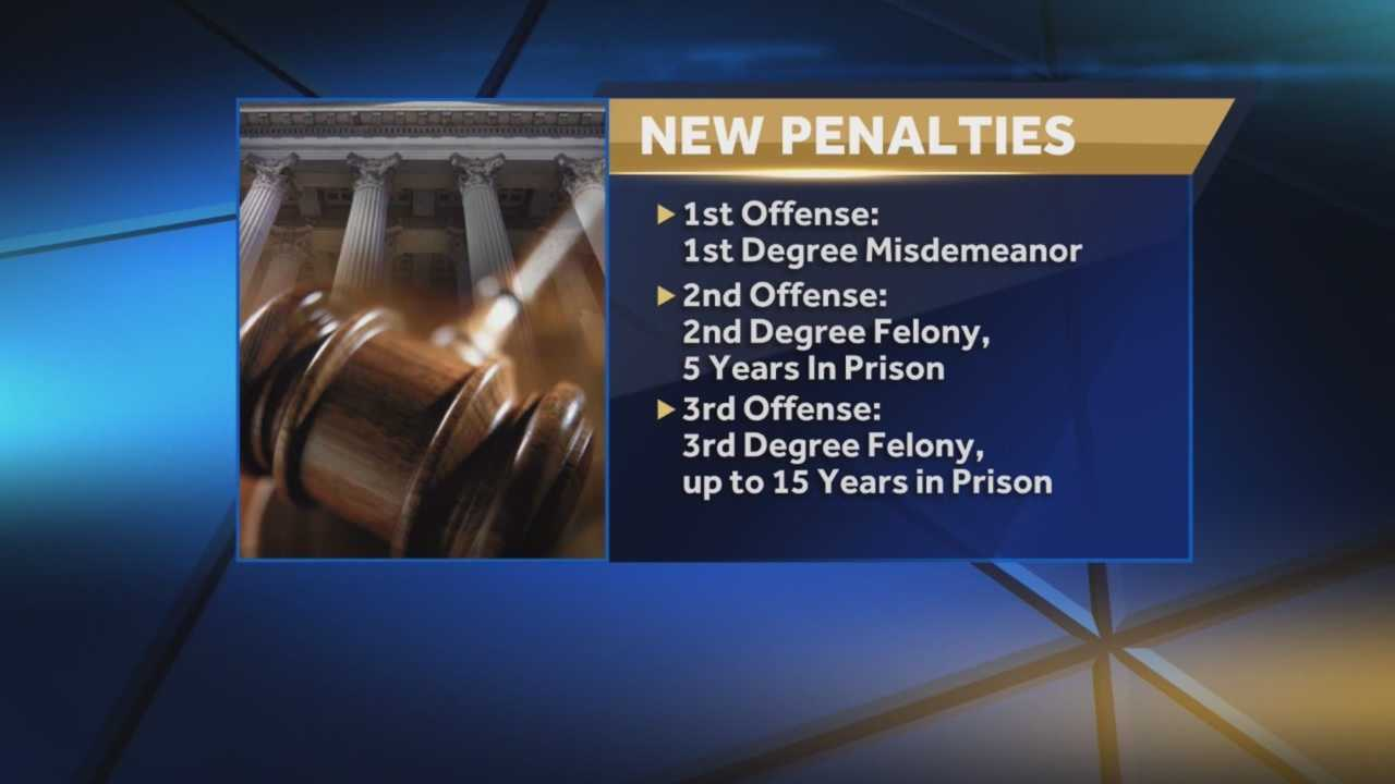 More than two dozen new laws went into effect Oct. 1. Amanda Ober (@AmandaOberWESH) has details on what you need to know.