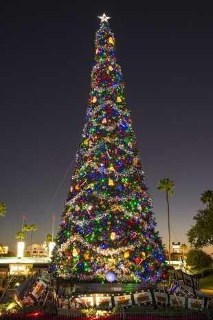 Christmas Tree at Disney's Hollywood Studios