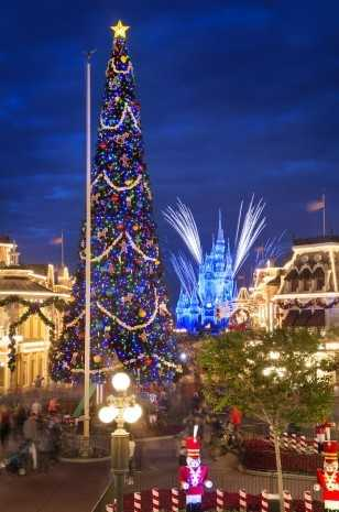 Christmas Tree at Magic Kingdom Park
