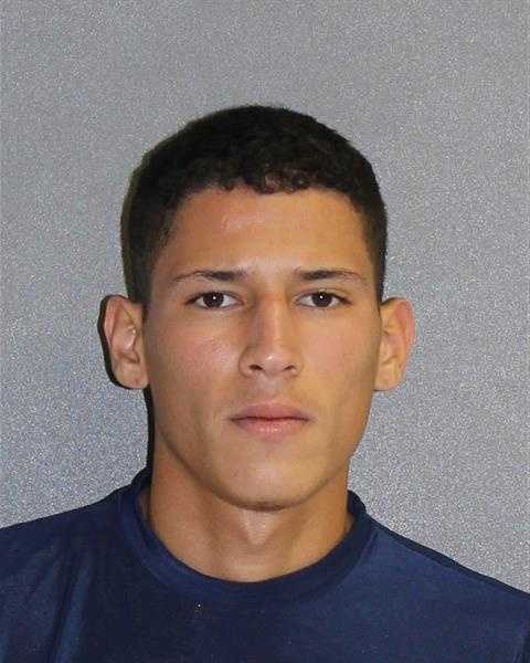 BRYAN DIAZ ORTIZPOSSESSION OF CANNABIS NOT MORE THAN 20 GRAMSCARRYING A CONCEALED WEAPONPOSSESSION OF PARAPHERNALIA