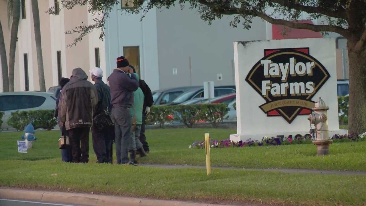 A worker at Taylor Farms Florida was killed in an industrial accident Wednesday morning, an Orange County fire official confirmed. It happened at the food distribution center in the 7000 block of Chancellor Drive, near South Orange Blossom Trail and Sand Lake Road. Michelle Meredith (@MichelleWESH) has the latest update.