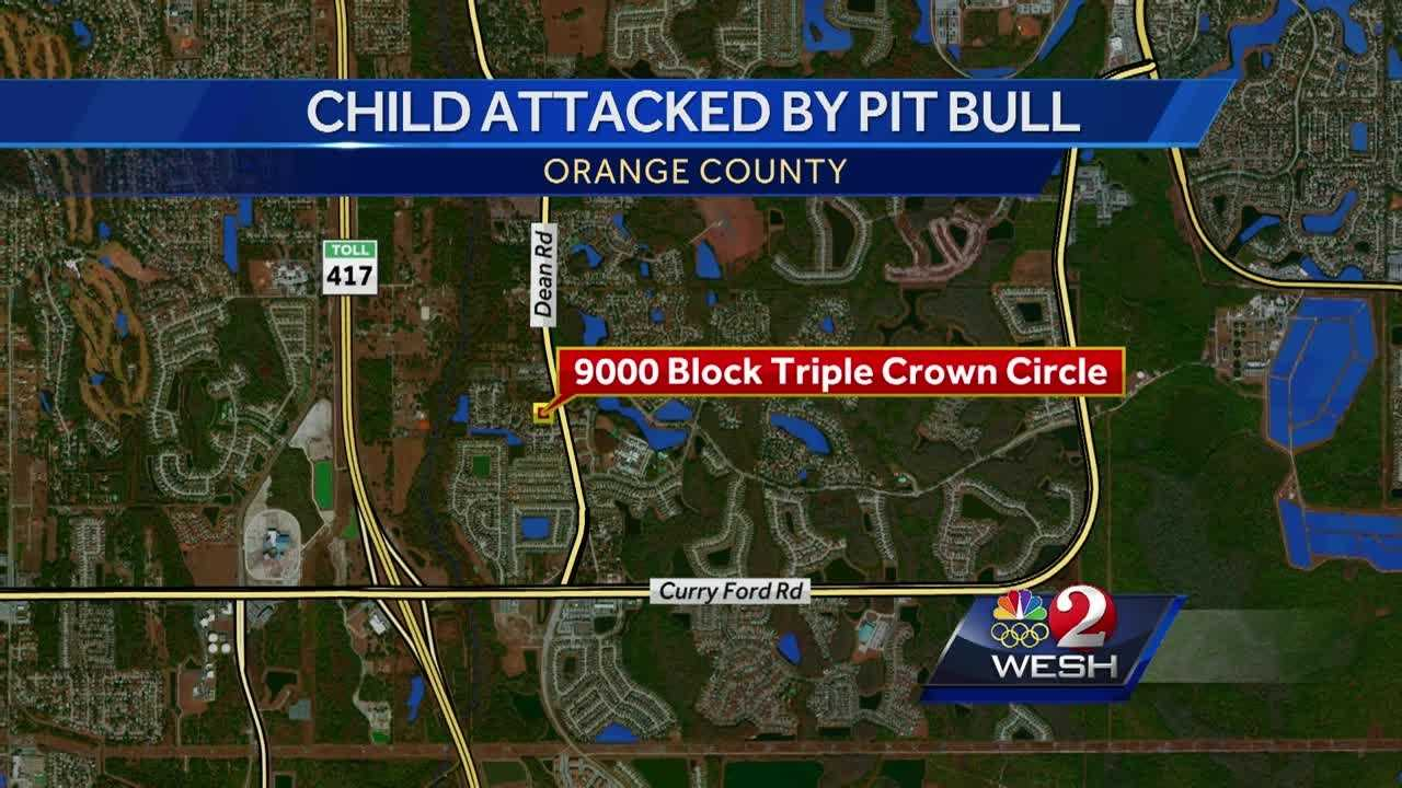 A young girl was attacked by a pit bull in Orange County and rushed to the hospital with major wounds, WESH 2 News has learned. Jim Payne reports.