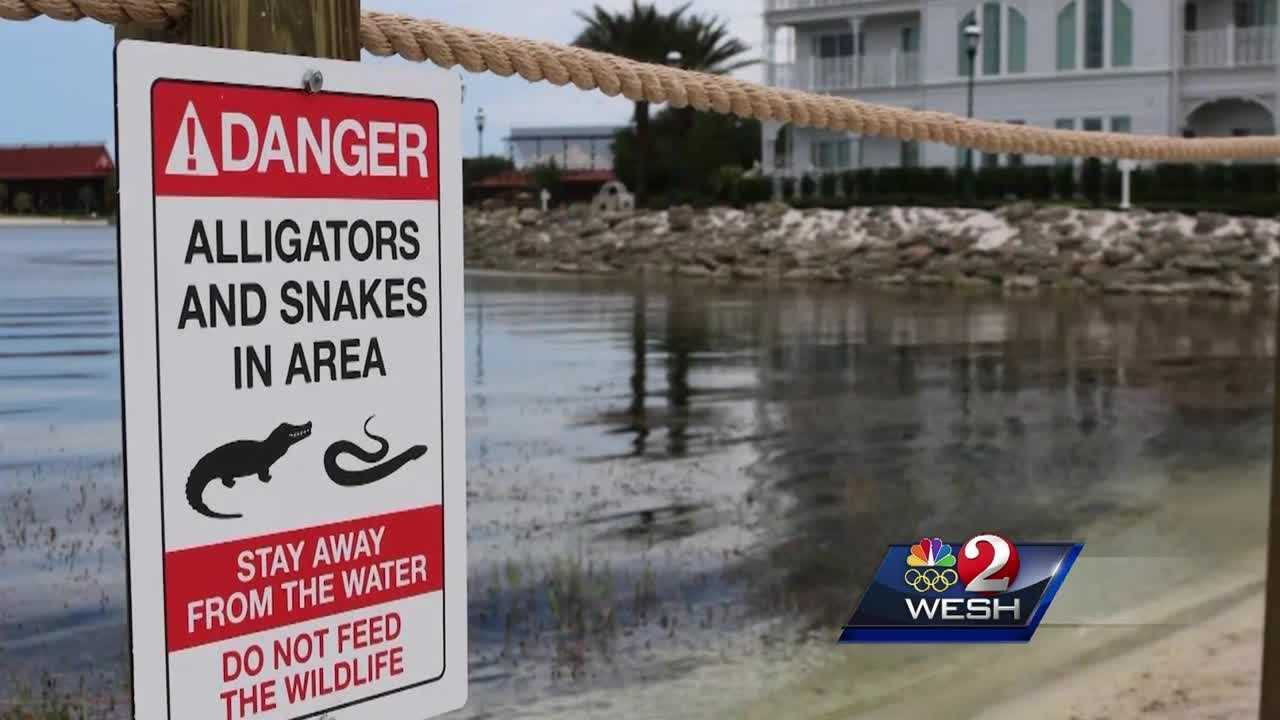 "Walt Disney World Resort has made more changes in the wake of a fatal alligator attack earlier this month. ""No fishing"" signs have gone up at Saratoga Springs Resort and Spa, the Fort Wilderness Campground and the Old Key West Resort. Amanda Ober reports."