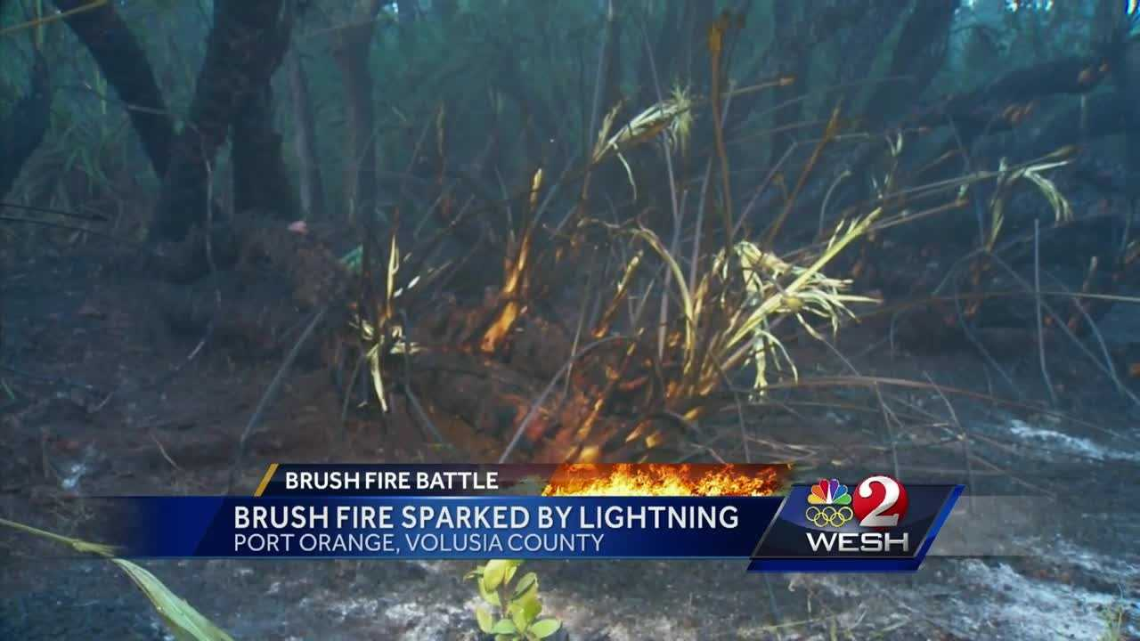 Firefighters have knocked down a brush fire that burned more than 20 acres in Port Orange.