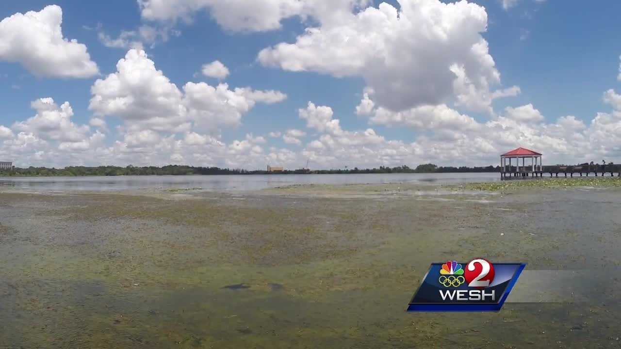 Algae appears in Lake Baldwin