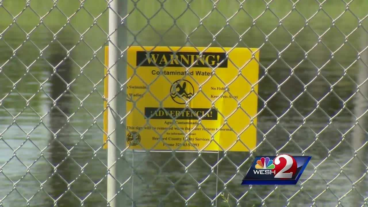 Hundreds of thousands of gallons of raw sewage lie in canals and ponds around Satellite Beach Wednesday, the fourth sewage spill in that area this year. Dan Billow reports.